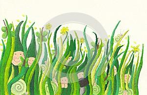 trava-s-motylky.jpg